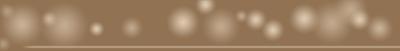 Logo Hochzeitsfotograf Johann Winterholler mit Glanzveffekt