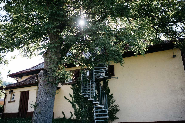 Sonne strahlt durch Baum vor einem alten Weingut
