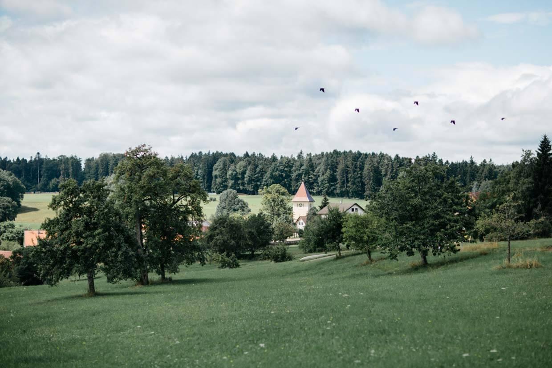 Wiese mit Kirchturm und Vögel am Himmel