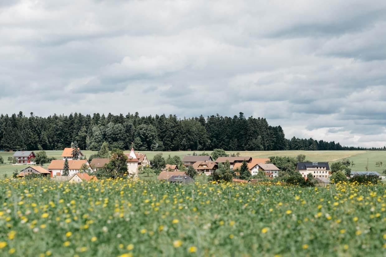 Wiese mit Dorf im Hintergrund