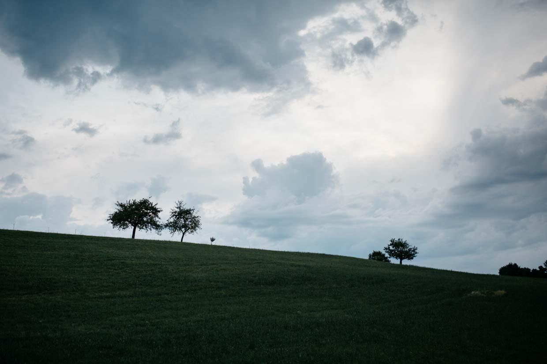 Wiese mit vereinzelten Bäumen mit dunklen Wolken am Himmel